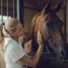 Vilka regler gäller vid hästköp?