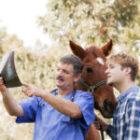 Hästjuridik – Vilka åtgärder ska vidtas när hästköpet inte blev som förväntat?